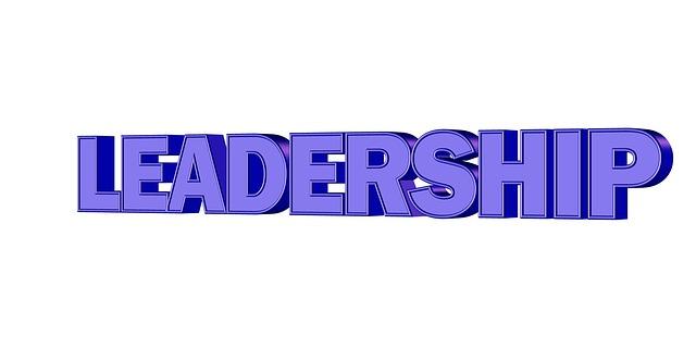 Leadership assicuratori rete di vendita
